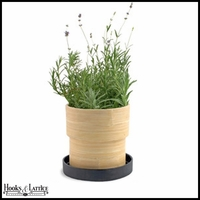Lavender Seed Kit in Bamboo Container