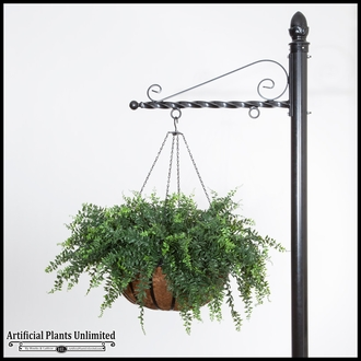 Leafy Green Plants in Hanging Baskets