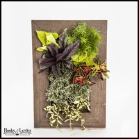 Living Wall Kit with Reclaimed Ghostwood Frame