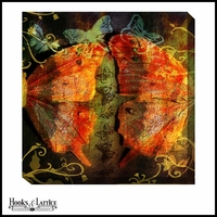 Mirrored Butterflies - Canvas Artwork