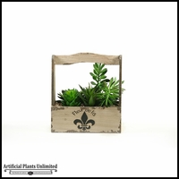 11in. Mixed Succulents in Rectangle Fleur De Lis Planter with Handle