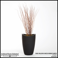 Curly Willow in Nazca Round Planter
