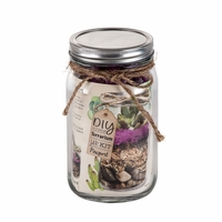 Newport Sand and Sea Mason Jar Terrarium Kit