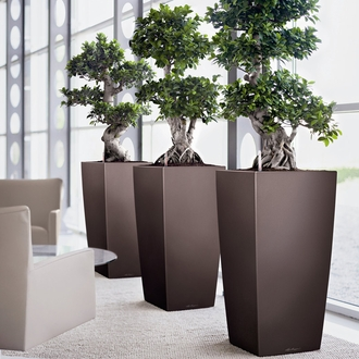 office planter. office planters click to enlarge planter i