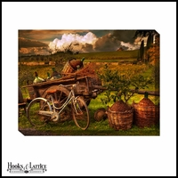 Old Italian Vinyard - Canvas Artwork