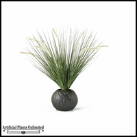 27in. Onion Grass with Cream Plumes in Ceramic Planter