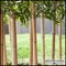 Outdoor Artificial Bamboo Divider in Soil Base