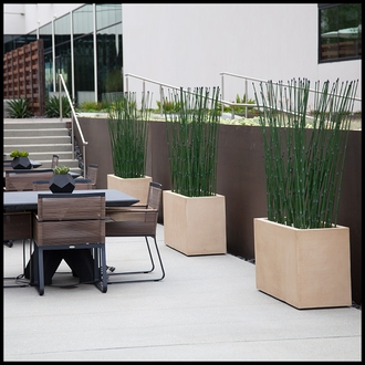 Outdoor Artificial Horsetail Groves in Modern Planters