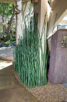 Outdoor Artificial Reed Clusters