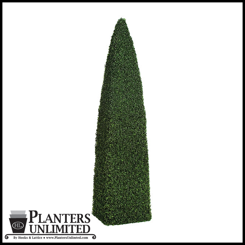 Plants For Topiary Frames