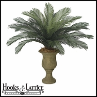 44in. Medium Sago Palm Cluster, Outdoor Rated