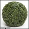 Outdoor Boxwood Topiary Spheres