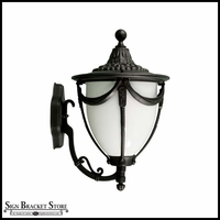 Decorative Wall Fixture - 120V