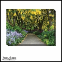 Overgrown Southern Garden Path - Canvas Artwork