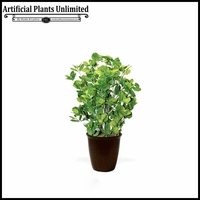 24in. Peppermint Plant in Fiber Pot