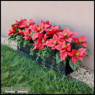 Poinsettia and Buckler Fern Mounted in Black Laguna Fiberglass Windowbox