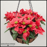 Poinsettia Mounted in English Garden Hanging Basket