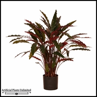3' Potted Baby Aspidistra (2 Colors)
