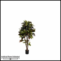 4' or 8' Potted Croton Tree