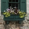 Presidential 36 in. Window Box - Green