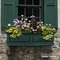 Presidential 48 in. Window Box - Green