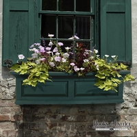 Presidential 60 in. Window Box-Green