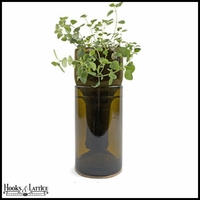 Recycled Bottle Seedling Kit - Growing Oregano