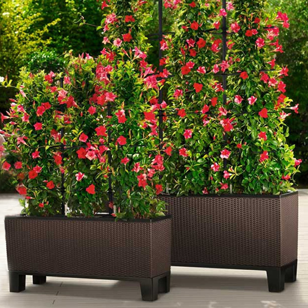 Residential outdoor planter buying guide hooks lattice residential outdoor planters buying guide workwithnaturefo