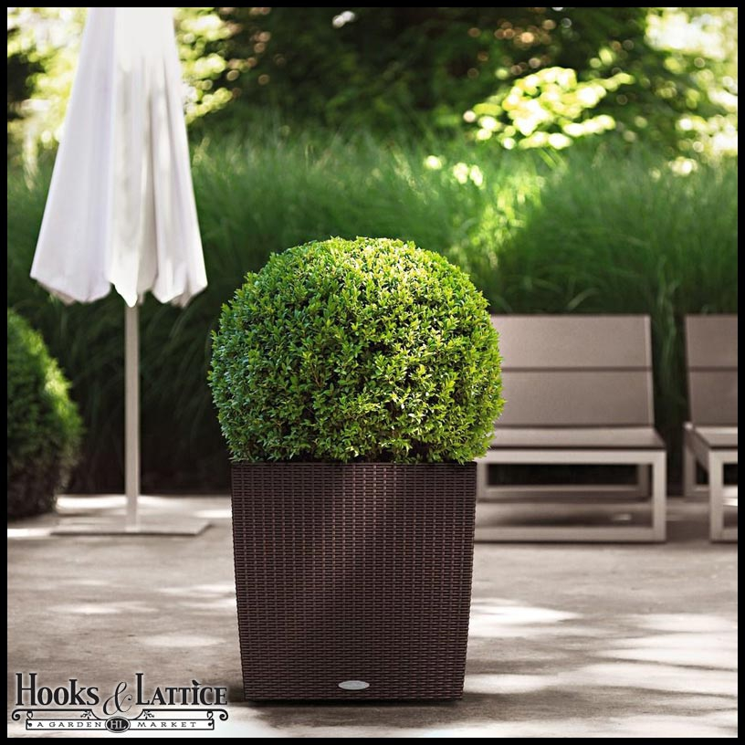 Residential Planters Pots Click To Enlarge