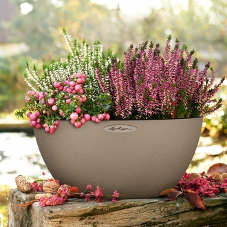 Rouse Self-Watering Low Bowl Planter - Large