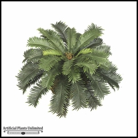 26in. Sago Palm Bush - Green, Indoor