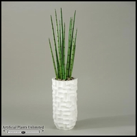 Sanseveria in Tall White Contemporary Resin Vase, 60 in.