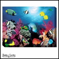 School of Tropical Fish - Canvas Artwork
