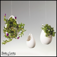 Set of 3 Rhapsody Hanging Terrariums