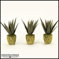16in. Set Of Three Agave Plant in Round Garden Vases