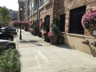 Sharon Square Beautification Project