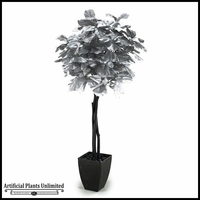 7' Silver Fiddle Leaf Fig Tree in Square Metal Planter