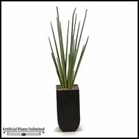 5.5' Snake Grass in Square Metal Planter