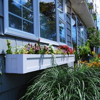 Solera Self Watering Window Box Planters