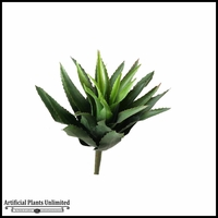 Star Agave Succulent, Medium Spray