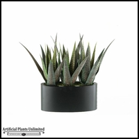 16in. Striped Agave in Oblong Metal Planter