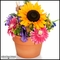 Sunflower Spring Topiary Arrangement
