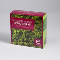 Terracotta Organic Sprouting Kit - Italian Arugula