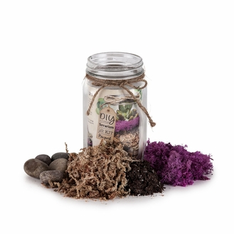 Terrarium Kits & Fairy Garden Supplies
