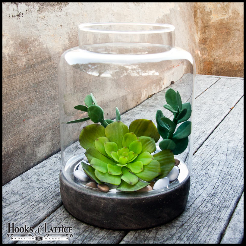 ... Glass Globes, Hanging Bubble Terrariums Click to enlarge - Plant Terrariums For Sale - Shop Terrarium Kits For Plants Online