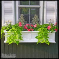 The Prestige Window Box - Three Colors To Choose From!