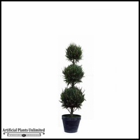 5.5' Triple Ball Italian Cypress In Tin Pot