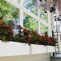 Urban Chic Self Watering Window Box Planters