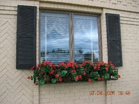 Vic & Bev's French Window Box
