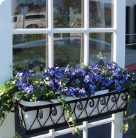 Wholesale Window Boxes & Commercial Discounts